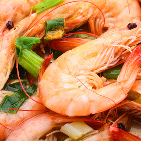 Commercial Shrimp Season Reopens July 15 corpus christ gulf of mexico