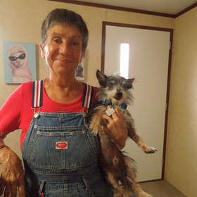 Peewee's in Corpus Christi places animals in loving homes
