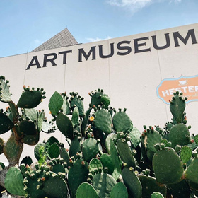 Free admission to Art Museum of STX all summer